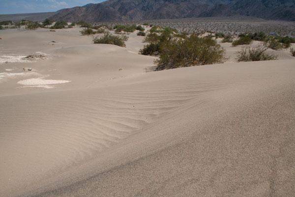 Desert au cœur des USA