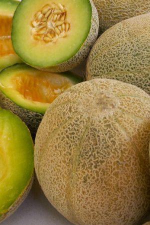 Melon Esperanza de Oro
