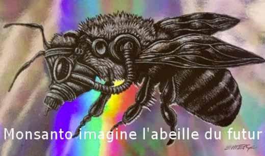insecte chimerique