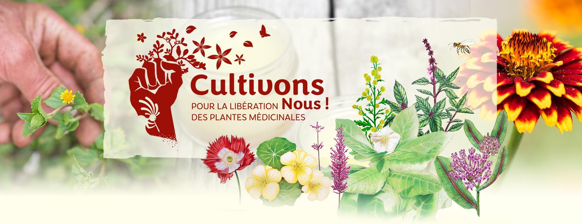 image-entete-CultivonsNous-campagneMedicinales-0