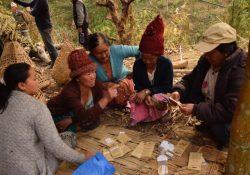 AssociationSaanoKosheli_echanges_sachets_ID1150_NEPAL